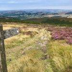 Shining Tor and Goyt Valley (7 miles)