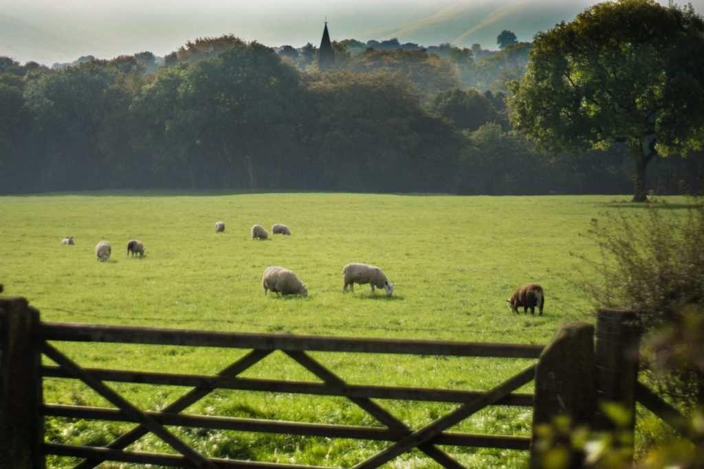 Peak District Bed & Breakfast : Ollerbrook Barn