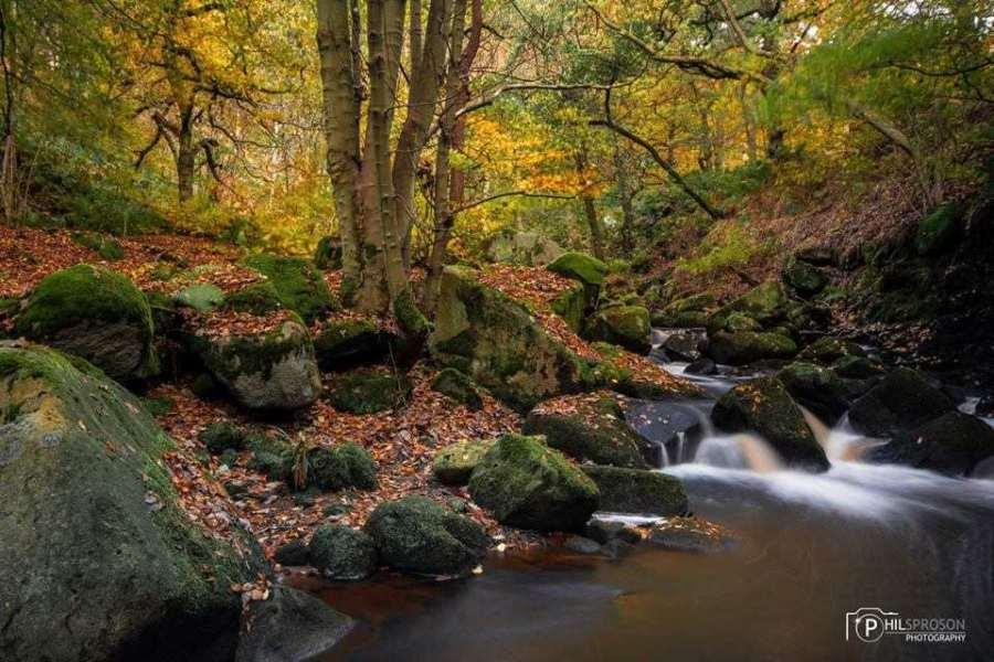 Grindleford Padley Gorge