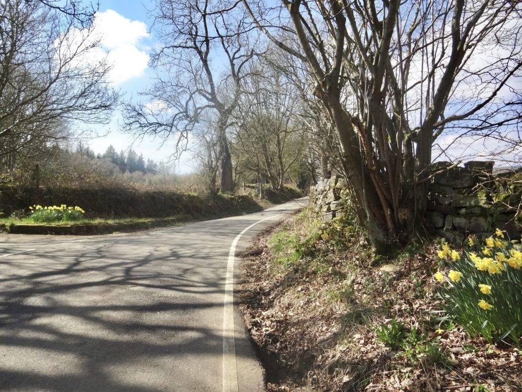 Dale Dike Reservoir Walk Circular including Bradfield
