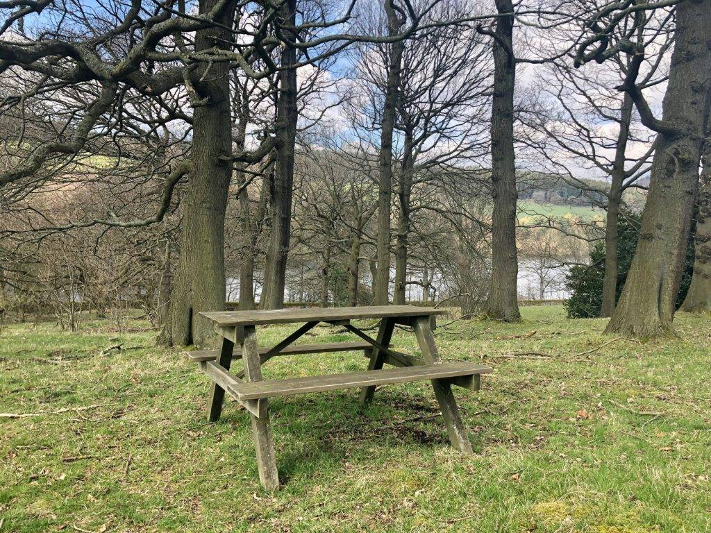 Dale Dike Reservoir Walk picnic bench