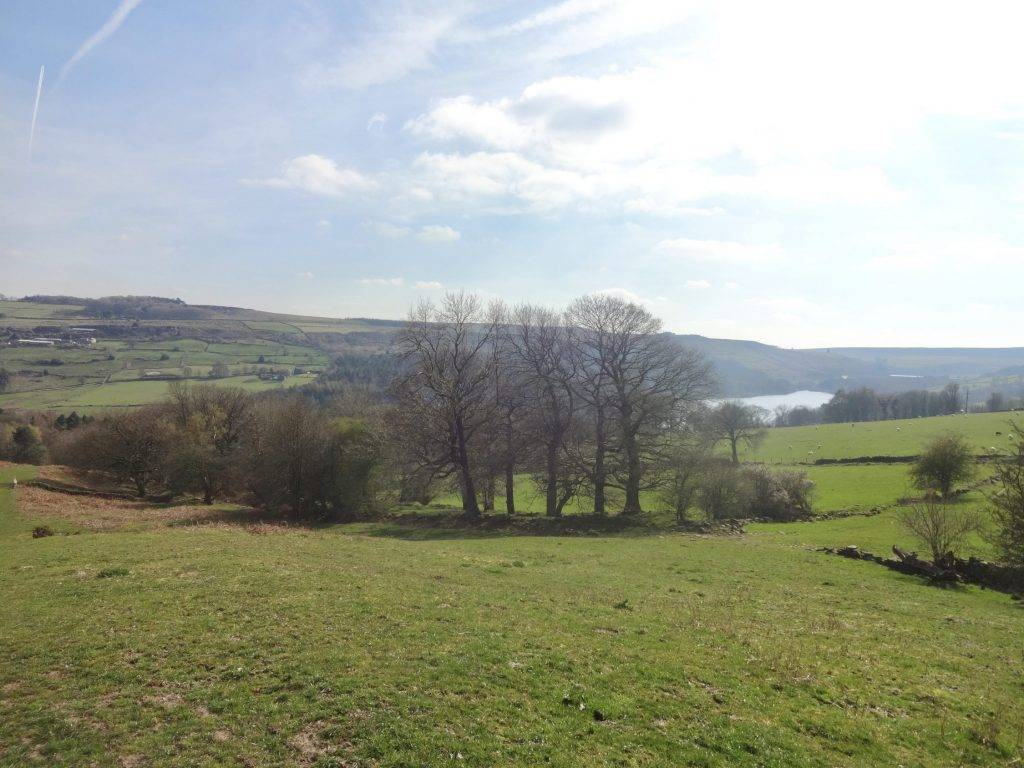 Dale Dike Reservoir Walk Circular including Bradfield