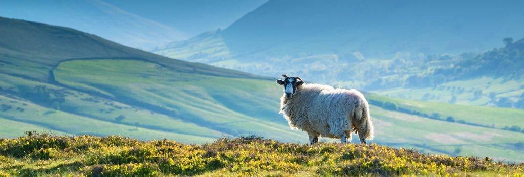 Peak District National Park Video