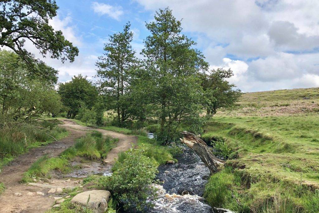 Padley Gorge and Surprise View (4.5 miles) 3