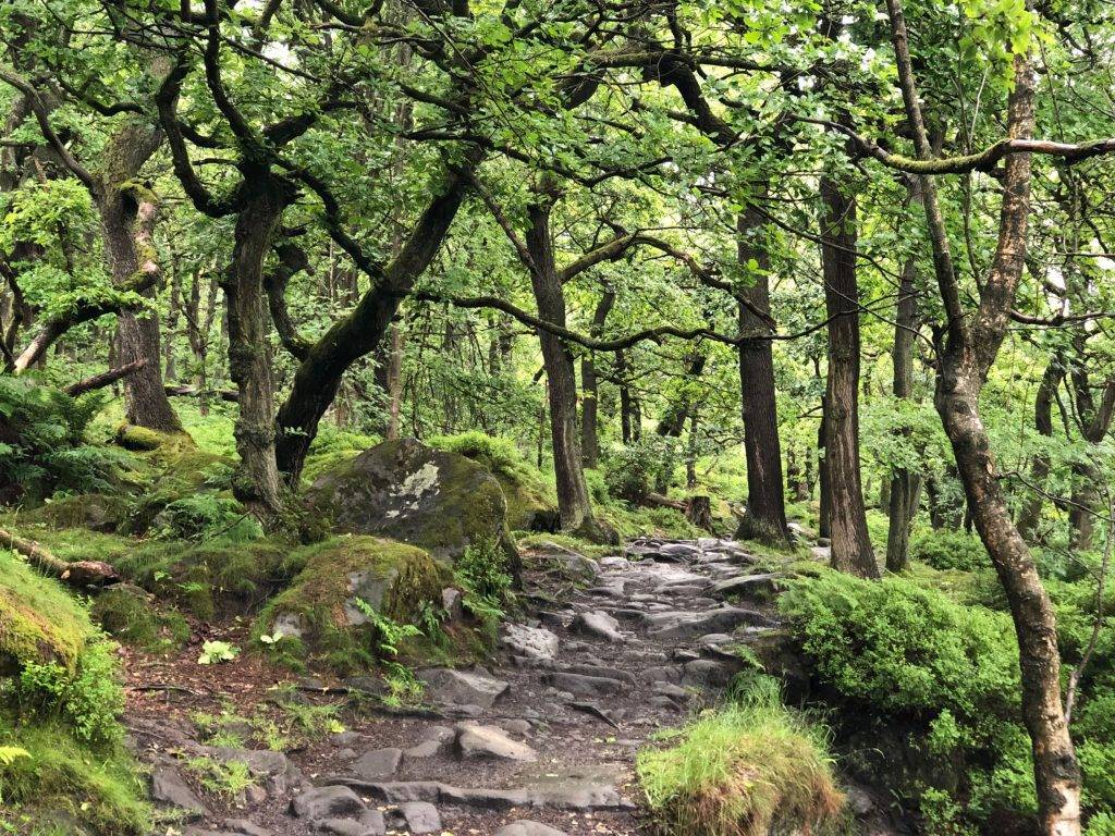 Padley Gorge and Surprise View (4.5 miles) 1