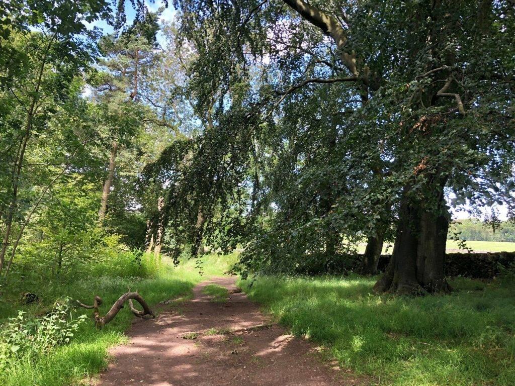 Youlgreave via Lathkill Dale walk