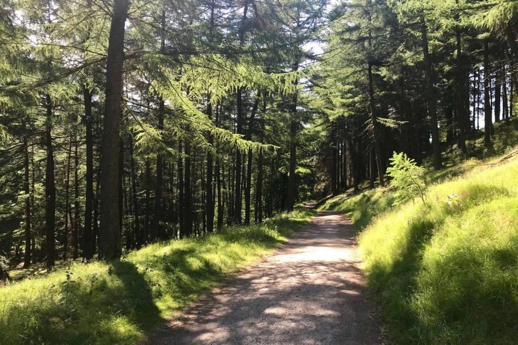 Walks by Distance 2