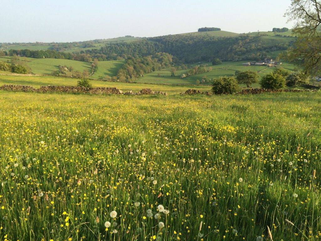 A Peak District Tapestry of organic art and Swedish inspiration 5