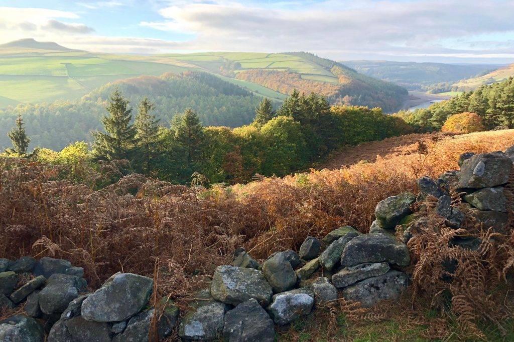 Derwent Edge (2.5 miles) 3