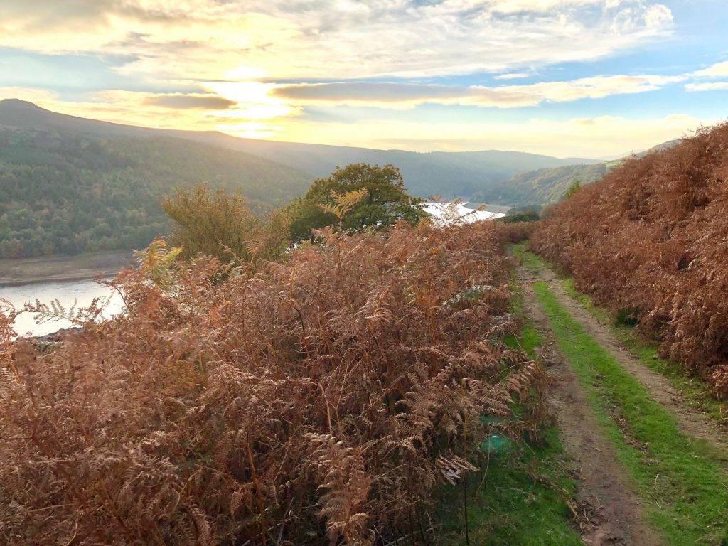 Derwent Edge (2.5 miles) 6