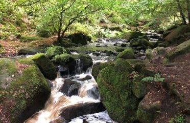 Wyming Brook walk