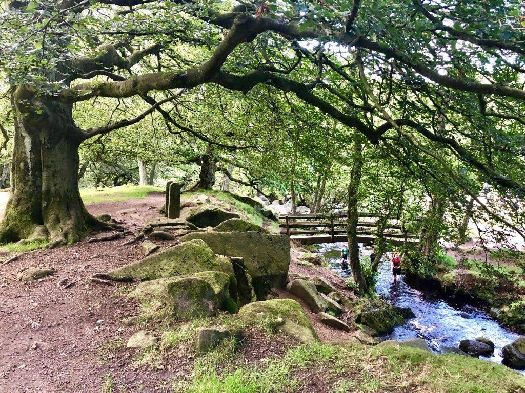 September/October 2019 Let's Go Peak District News 2