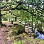 Kids' Walk: Padley Gorge (2 miles)