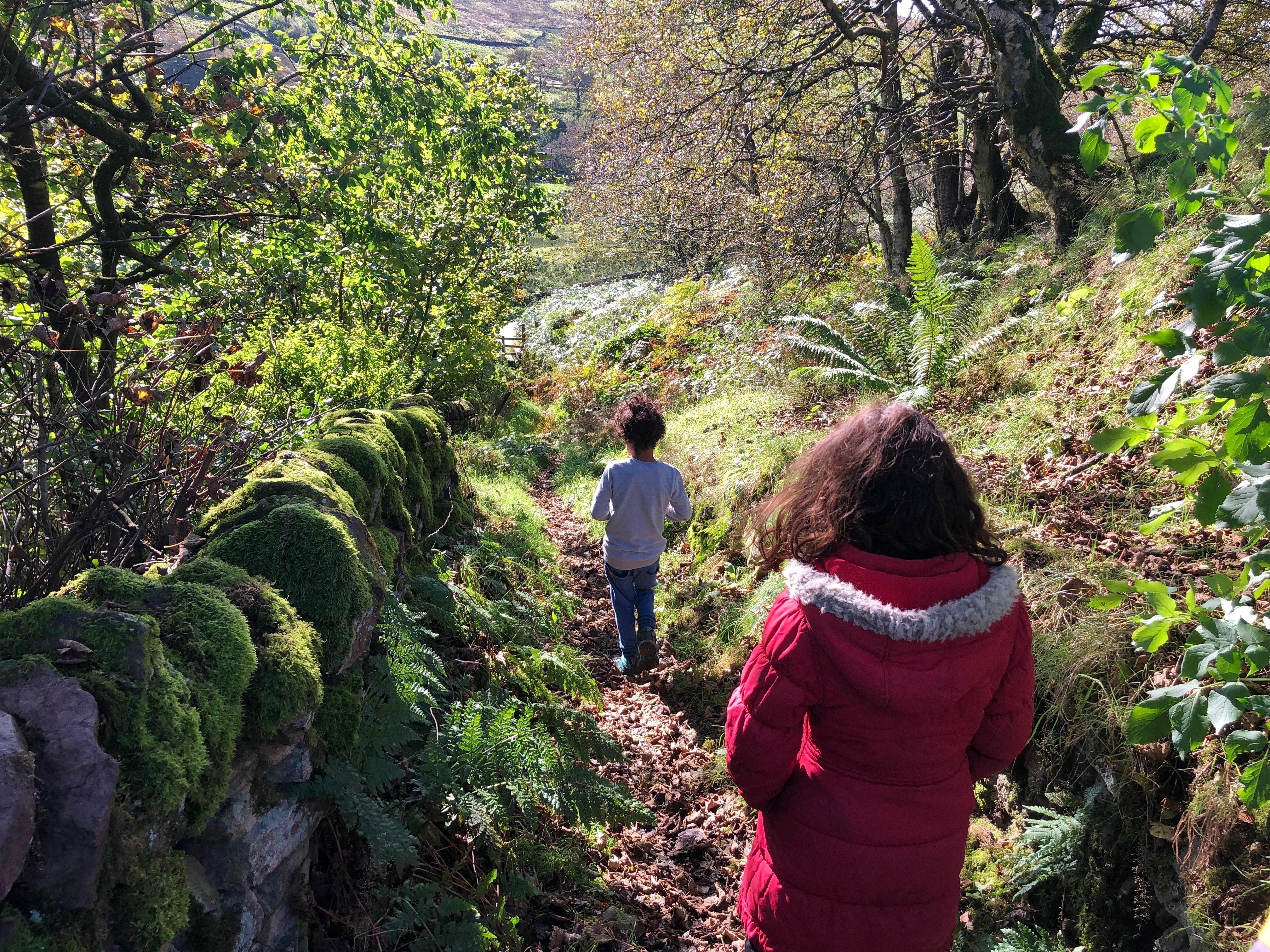 Kids' Walk: Three Shires Head