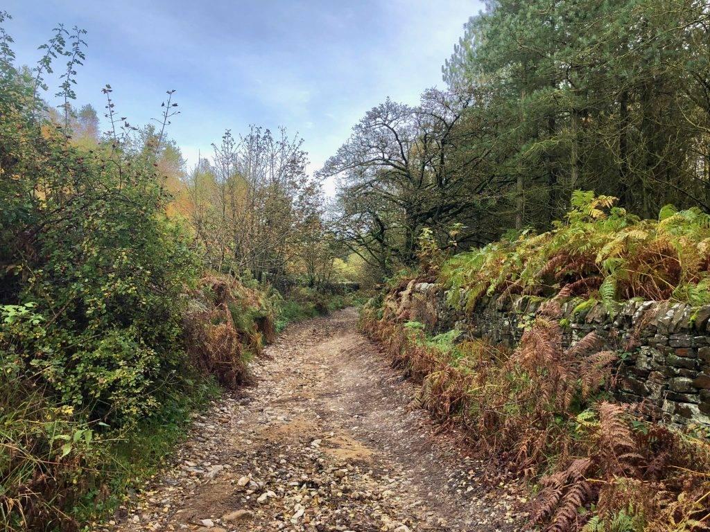 Beeley Walk Peak District