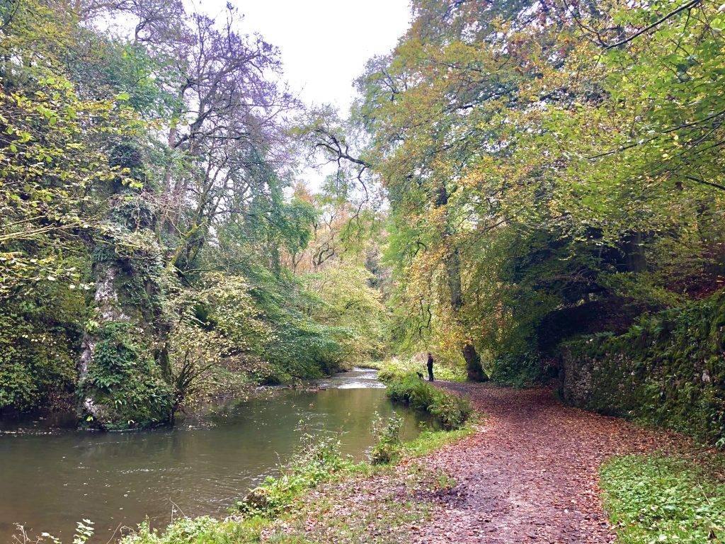 Hartington Dales Walk (5.4 miles) 3