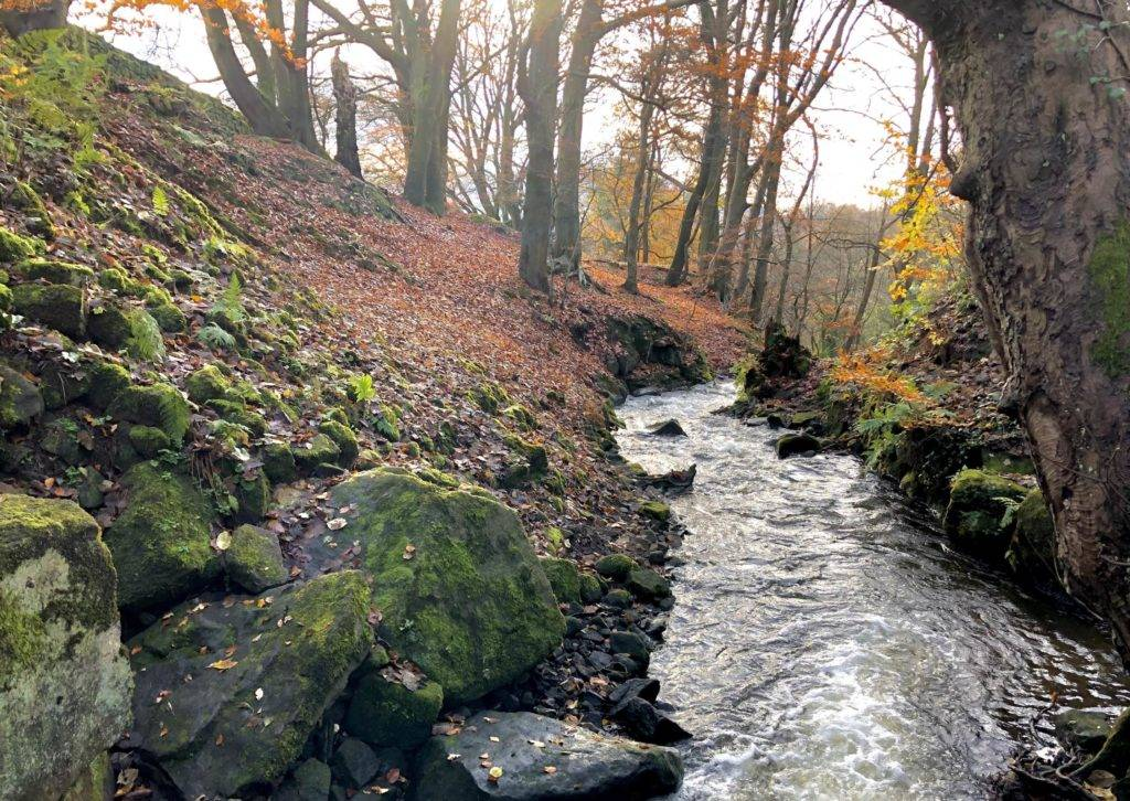 The Lumsdale Valley 1