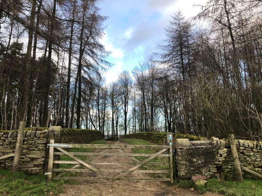 Chatsworth House Estate woodlands