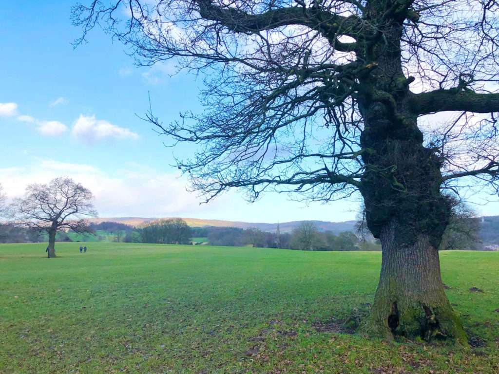 The Chatsworth Estate Walk