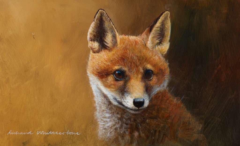 Richard Whittlestone Wildlife Gallery 3