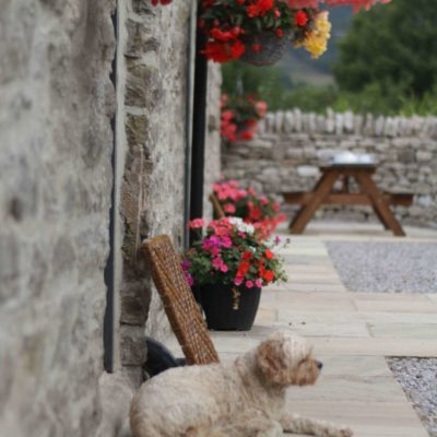 Speedwell House Holiday Cottages