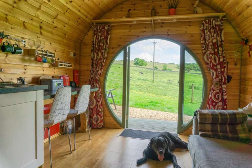 Hoe Grange Holidays : Perfect for your pets!
