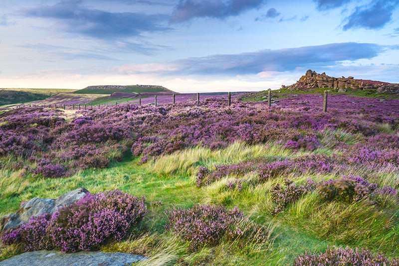 Seasonal Photography Workshops in the Peak District