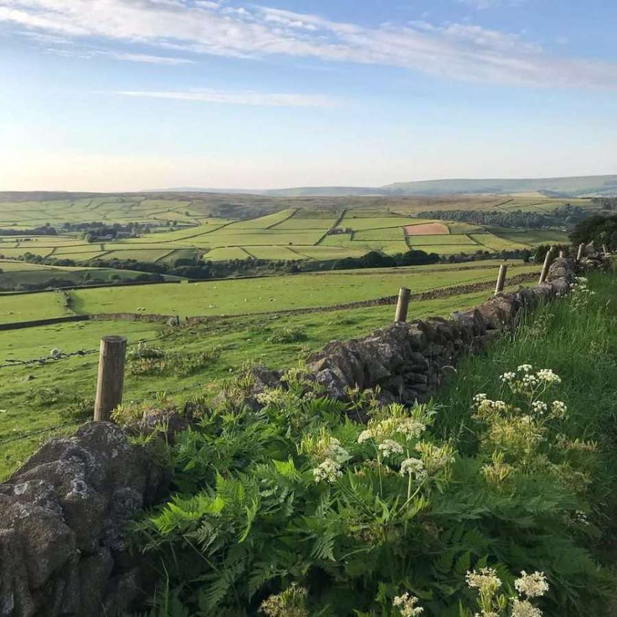Glamping in Peak District : The Hut at Eyam