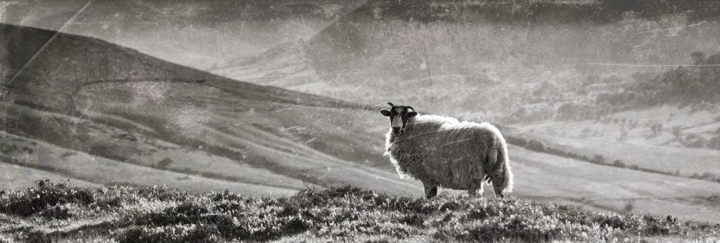 Peak District National Park Film