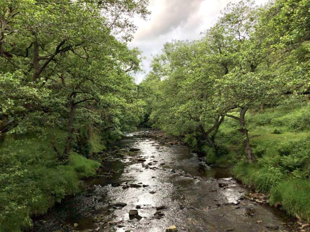 Secret Side of Ladybower Walk : River Ashop