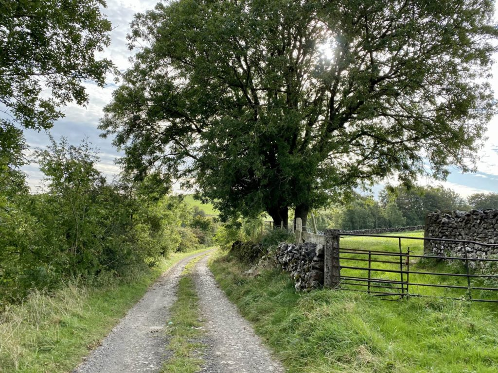 Tideswell Walk
