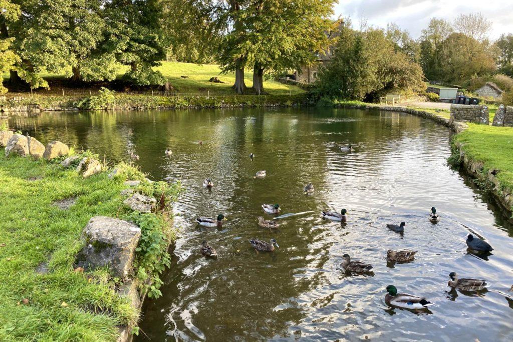 Tissington Walk via Parwich (4 miles) 7